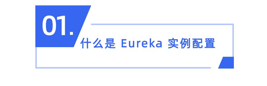 17.Eureka的实例配置